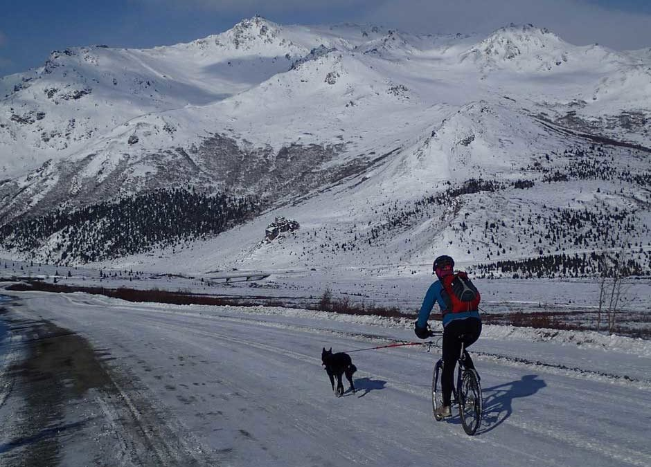 Winter is Coming, but Denali Still Has Much to Offer