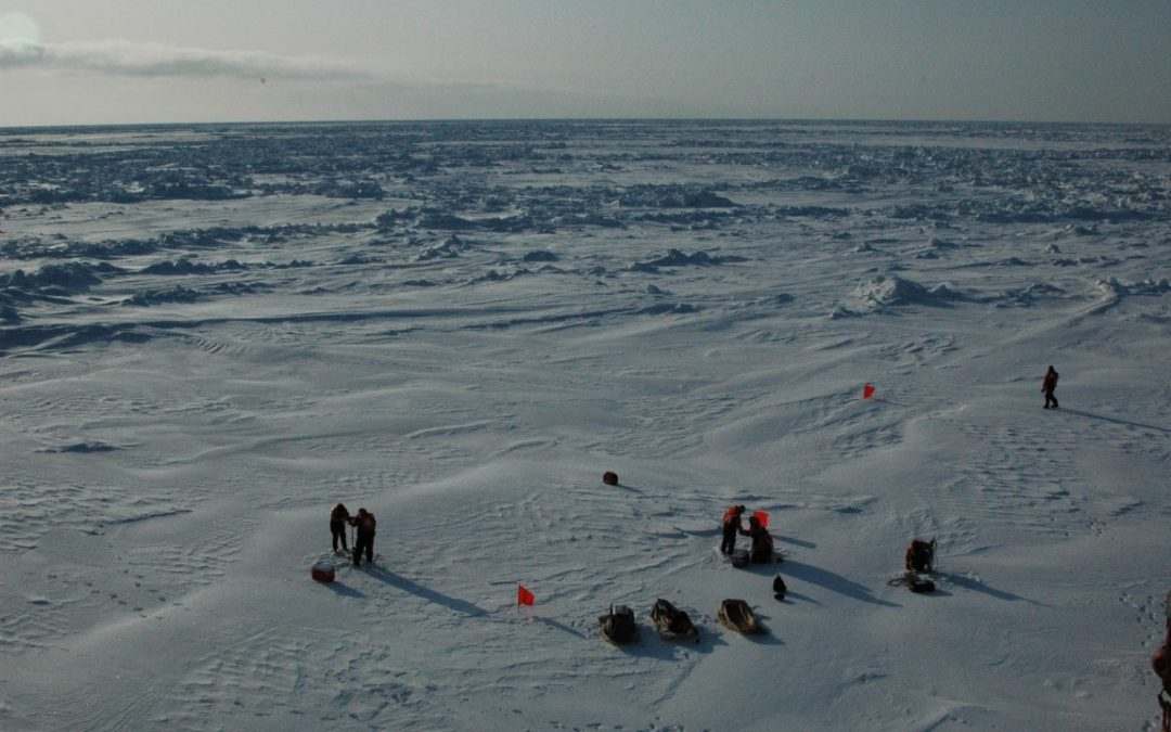 Stantec to Partner on Arctic Research Support Contract for the National Science Foundation