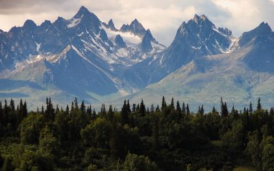 Alaskans Invited to Bid on 110 State Land Parcels in 2020 Fall Auction